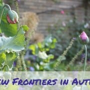 new frontiers in understanding and treating autism