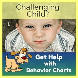 Challenging Child Ad