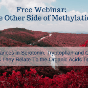 free-webinar_-the-other-side-of-methylation