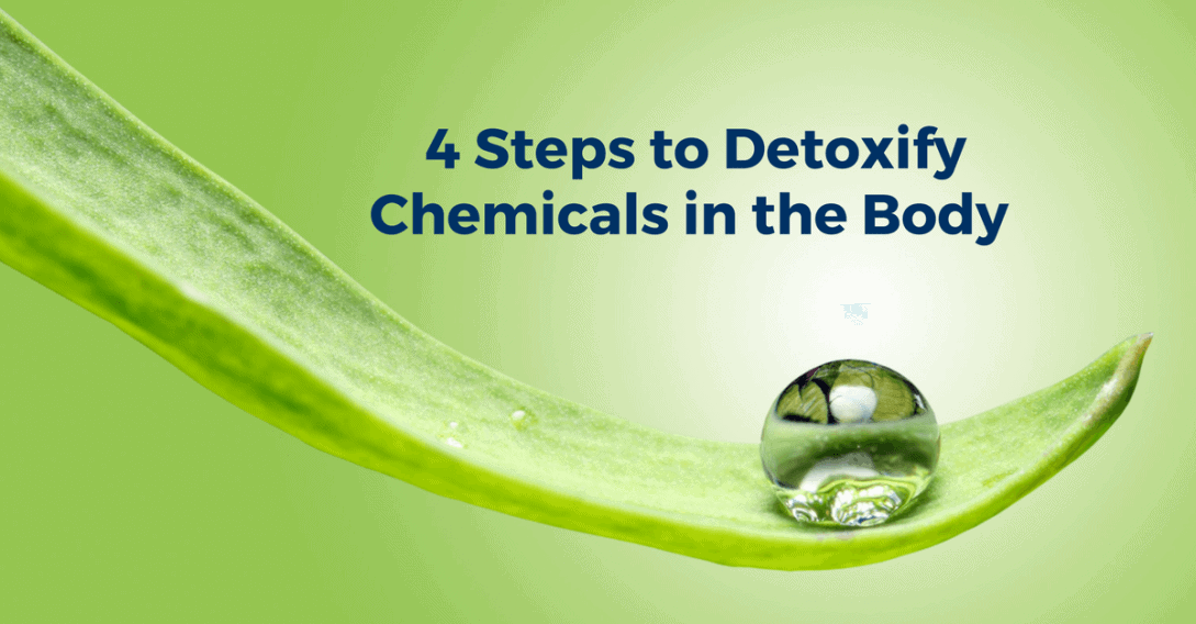 four steps to detoxify chemicals int he body