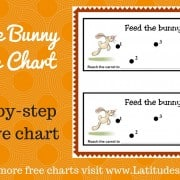 Feed the Bunny Behavior Chart