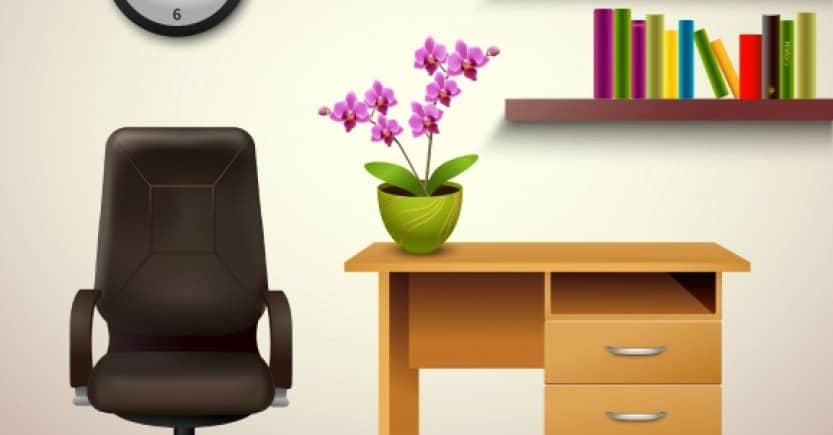 5 Great House Plants for Removing Toxins (Premium)