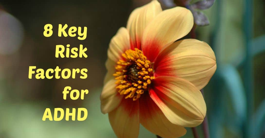 8 Key Risk Factors for ADHD 1