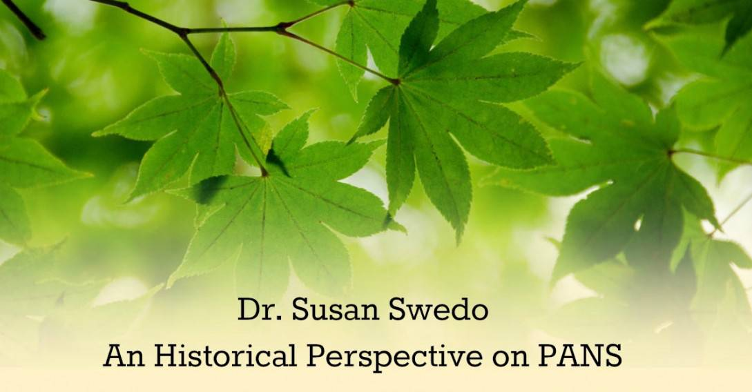 susan swedo an historical perspective on pans
