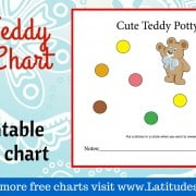 Cute Teddy Potty Chart