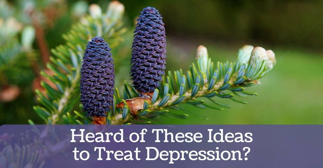 Heard of these Ideas to Treat Depression  Blog 2