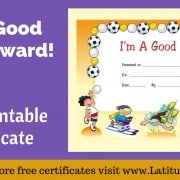 I'm A Good Sport Certificate WordPress