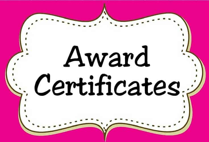 Award Certificates Icon