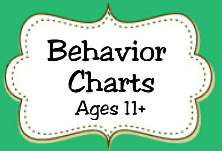 Behavior Charts Ages 11 Icon