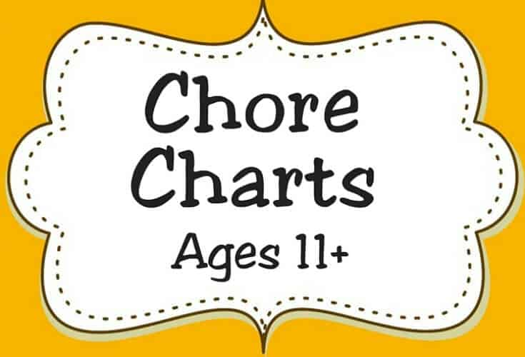 Chore Charts Ages 11 Icon