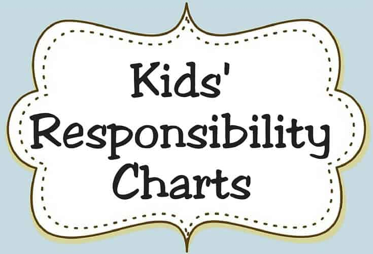 Responsibility Charts Icon