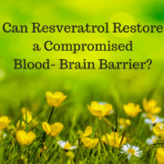 Can Resveratrol Restore a Compromised Blood Brain Barrier