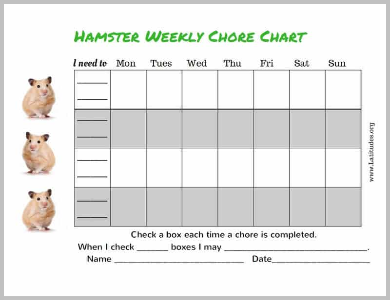 Hamster 4th-5th Grade Chore Chart Border
